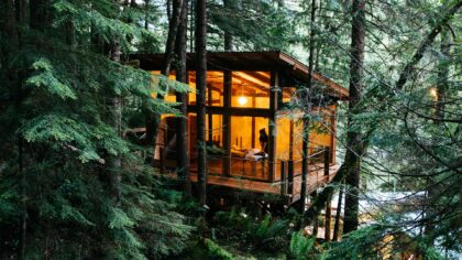 Spa nestled in a lush forest